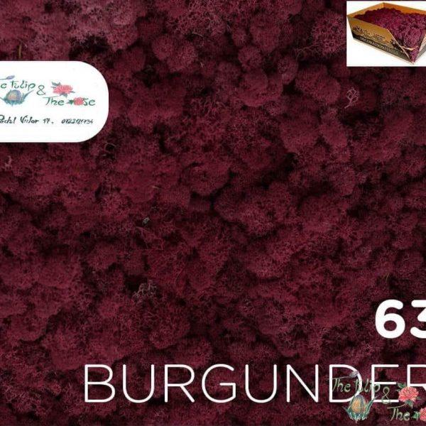 Licheni vrac Burgunder