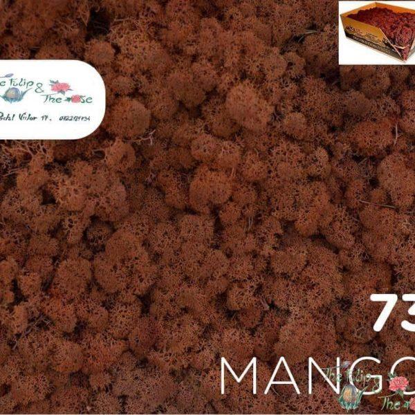 Licheni vrac Mango