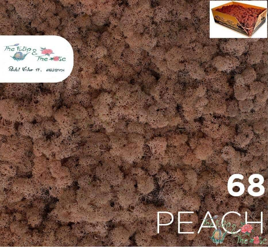 Licheni vrac Peach