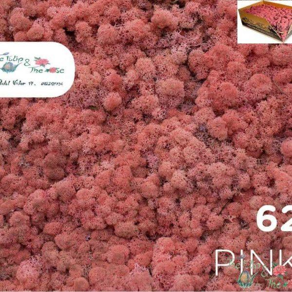 Licheni vrac Pink