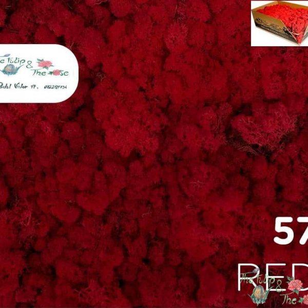 Licheni vrac Red
