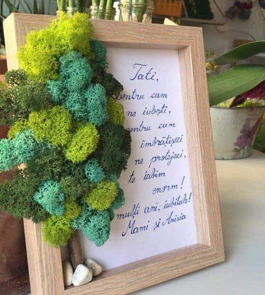 Tablou Licheni Copac cu mesaj 6