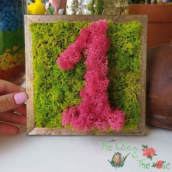 Tablou Licheni cifre aniversare 1