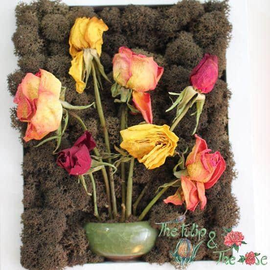Tablou licheni si flori uscate naturale 1